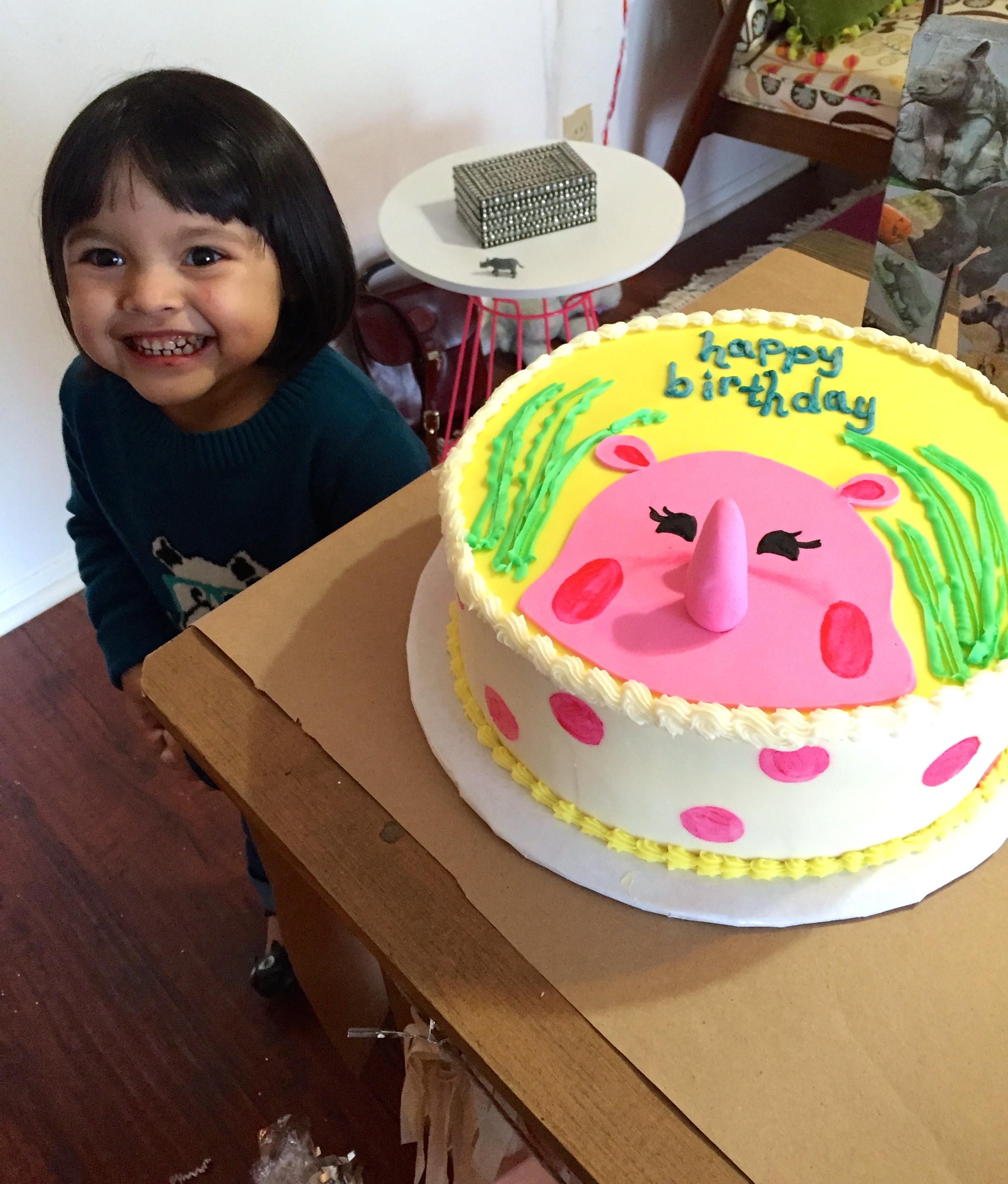 Rhino-themed birthday cake!