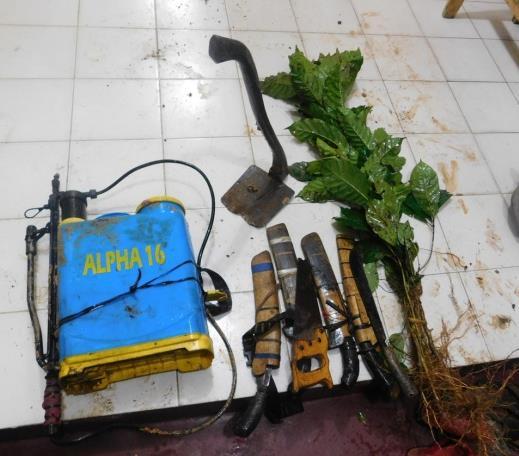 Tools used by encroachers to clear the forest.