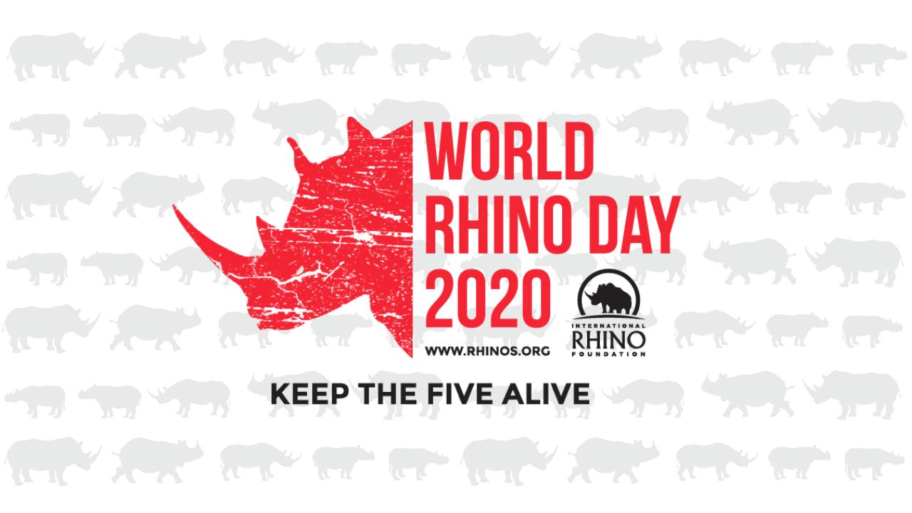 A Record Breaking World Rhino Day